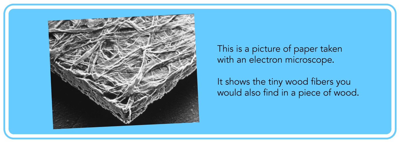This is a picture of paper taken with an electron microscope. It shows the tiny wood fibers you would also find in a piece of wood.