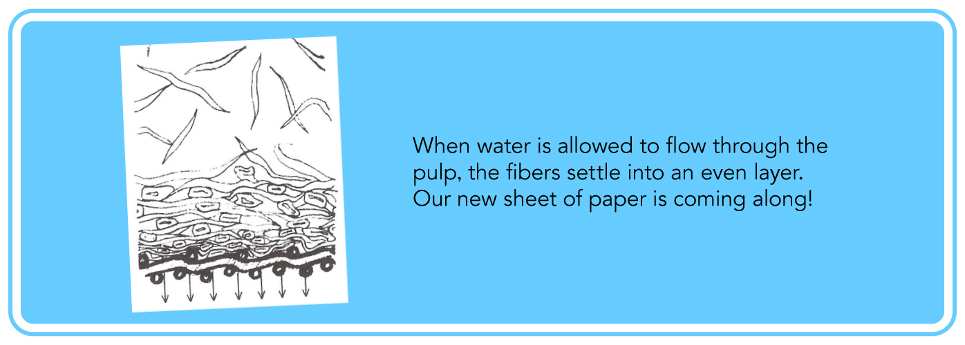 When water is allowed to flow through the pulp, the fibers settle into an even layer. Our new sheet of paper is coming along!