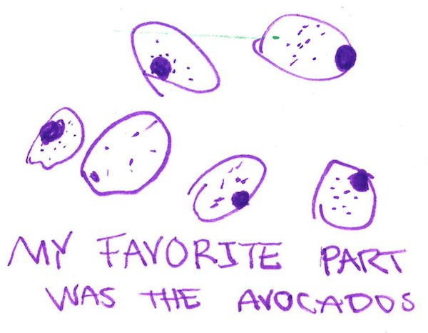 A drawing of purple avocados annotated with 'My favorite part was the avocados'