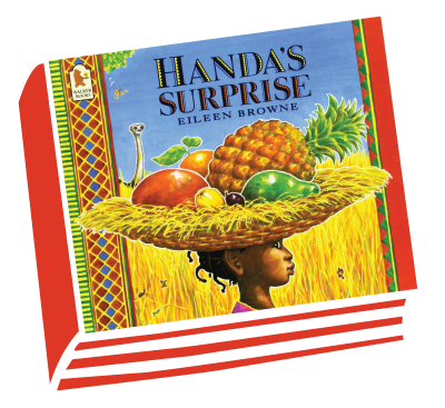 HANDA'S SURPRISE book cover