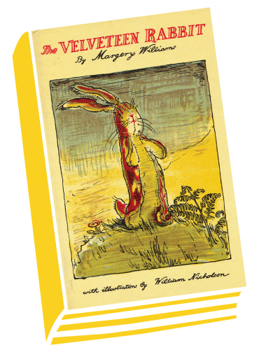 THE VELVETEEN RABBIT book cover