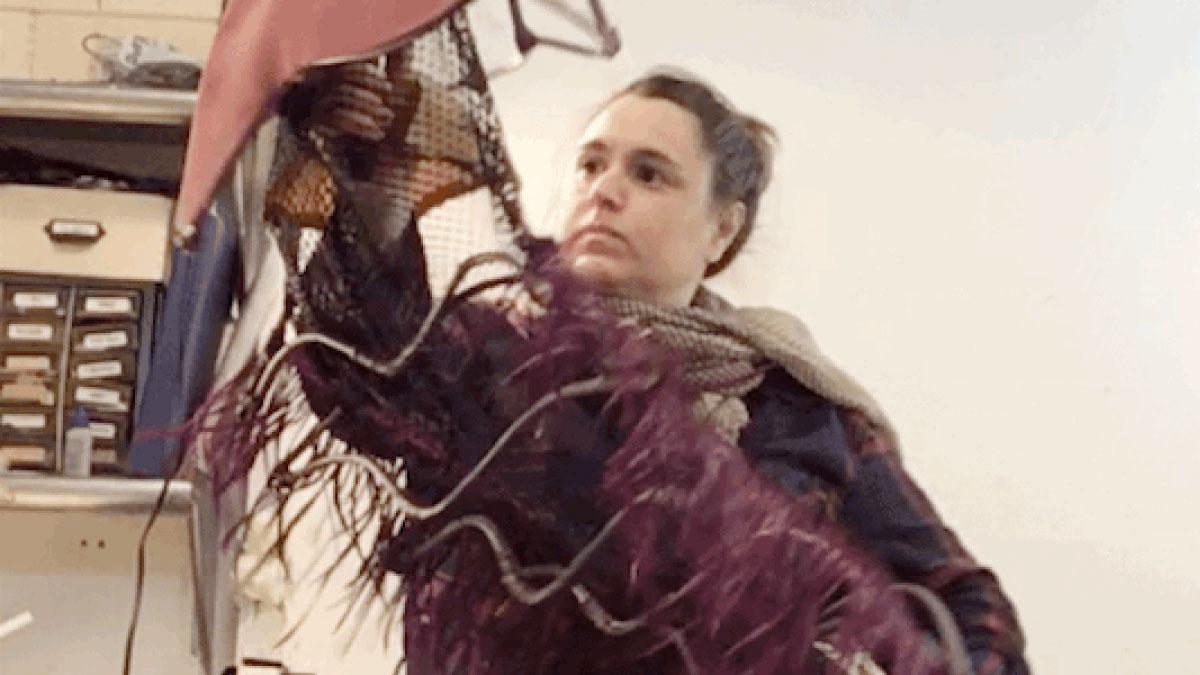 Amanda with Trilobite Puppet